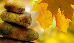 ipp-destaque-mindfulness
